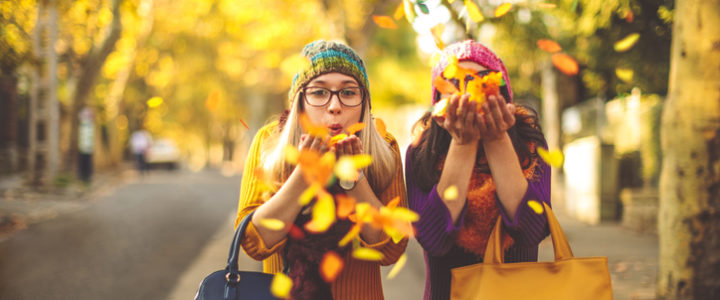 Our Guide to Fall Activities for Kids this Season at Redbird Market